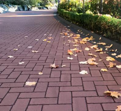 Streetprint Decorative Driveway